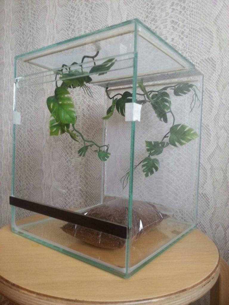 Террариум с искусственными растениями