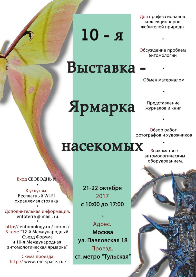 Выставка насекомых