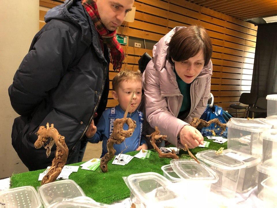 Энтомологическая выставка 2018