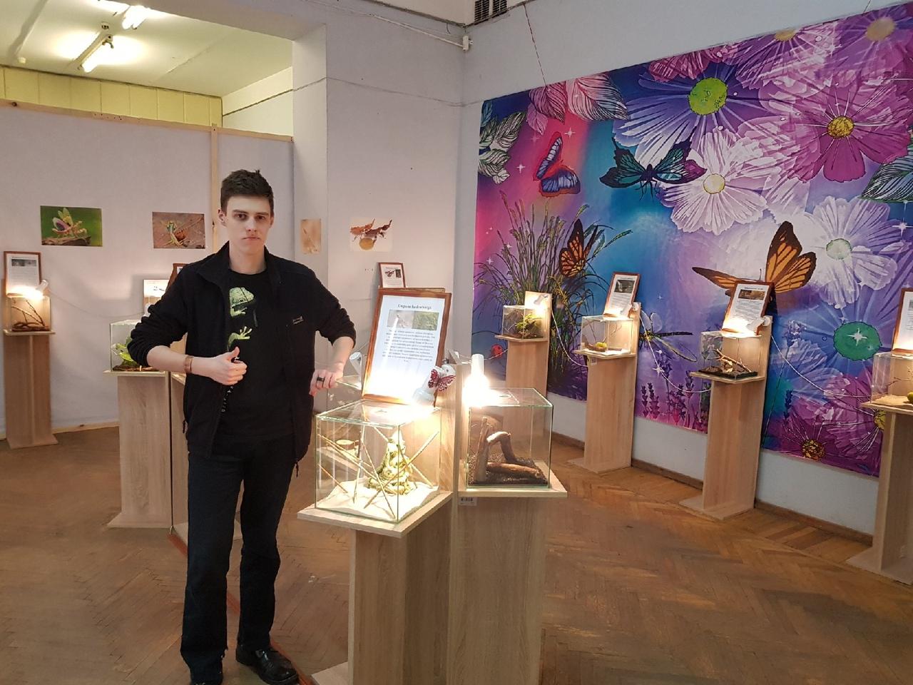 Выставка «богомолы — насекомые с другой планеты»