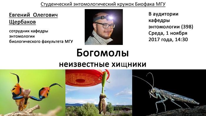 """Лекция Е.О. Щербакова """"Богомолы: неизвестные хищники"""""""