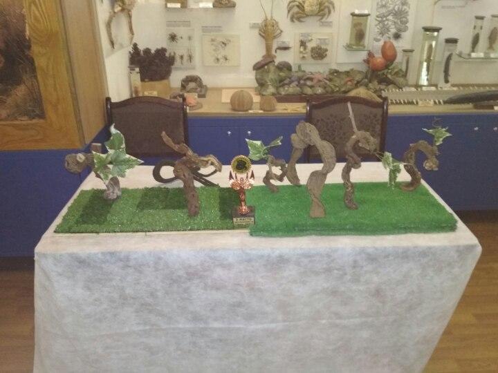 Наш выставочный стол